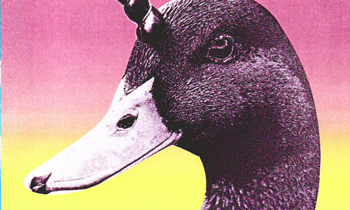 A duck with a unicorn horn on its head